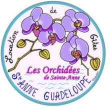 orchidees-st anne logo